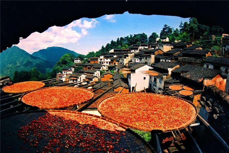 发展乡村旅游需要满足的5个条件1.jpg