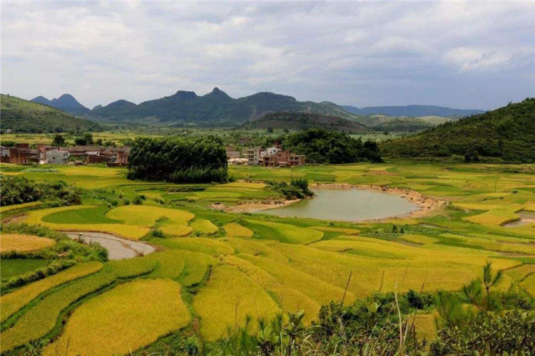 打造乡村旅游的5大核心吸引力4.jpg