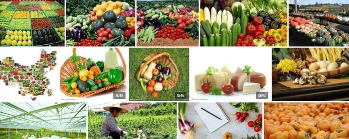 农产品电商小程序运营.jpeg