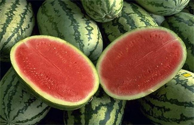 大兴农品,西瓜品种和图片.jpg