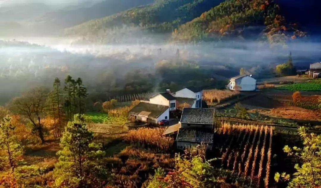 乡村旅游和农业混搭的10种规划设计.jpeg