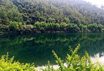 山西龙泉国家森林公园手绘地图、语音讲解、电子导览等智能导览系统上线.jpg
