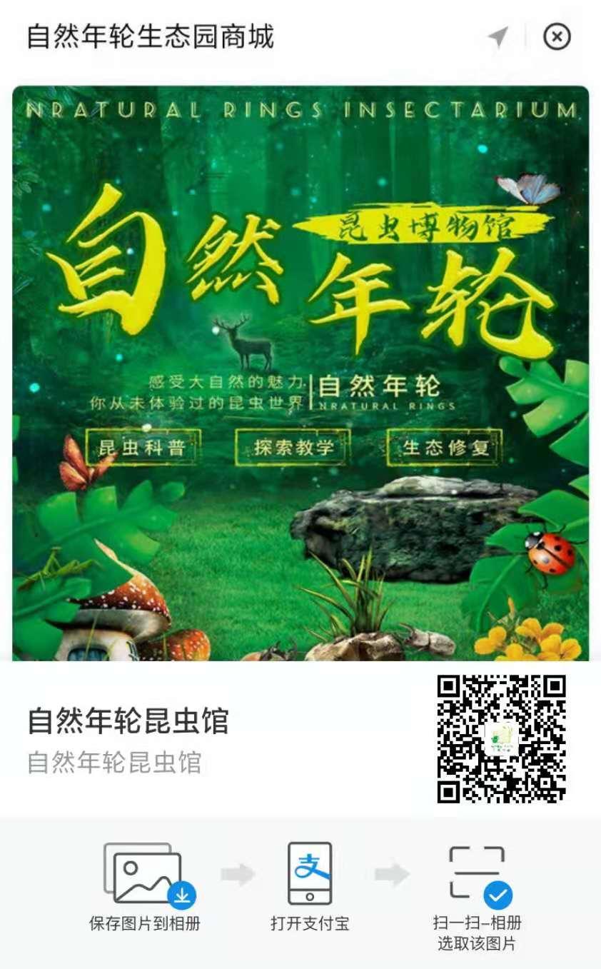 北京自然年轮昆虫馆支付宝小程序上线了,由小泥人负责支付宝小程序搭建及运营.png