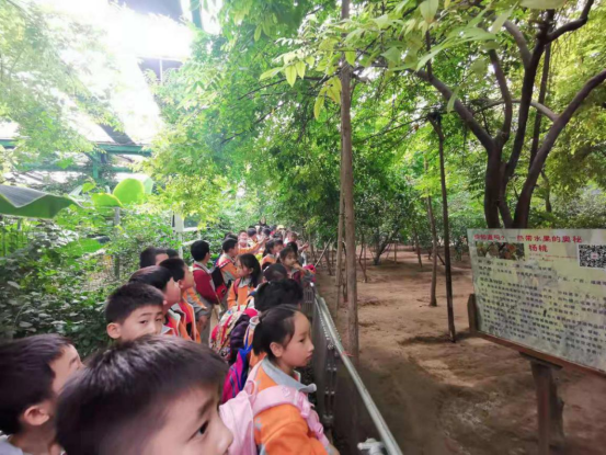 北京第五季露营农场支付宝小程序上线了,由小泥人负责支付宝小程序搭建及运营.png