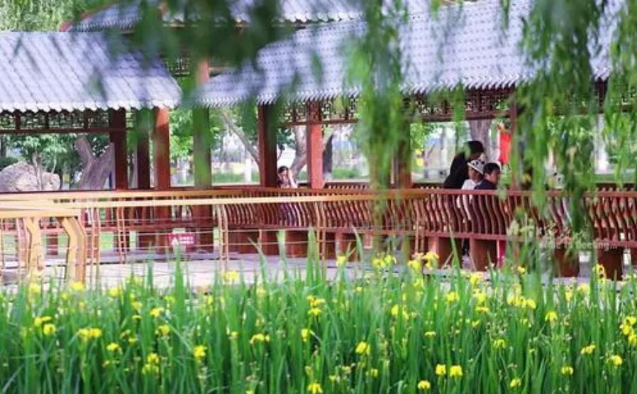 2021年石家庄薇波公园语音讲解功能与你一起了解当地生活文化.png